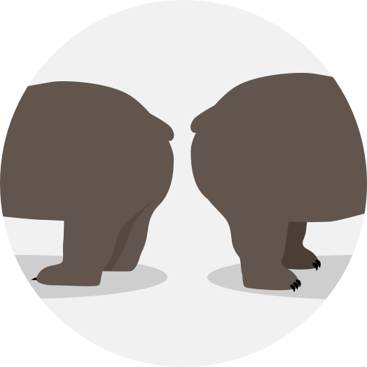 Two bears standing back to back
