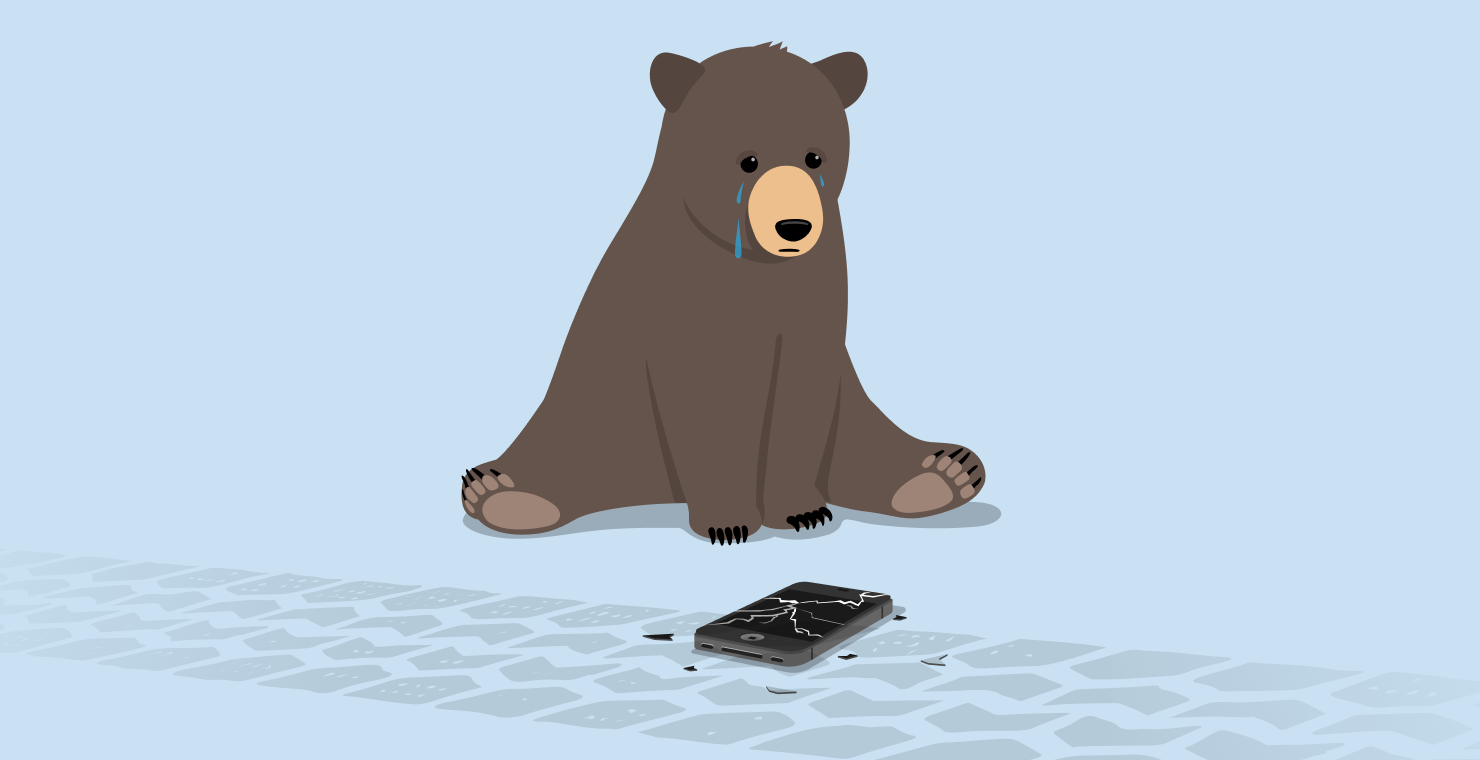How to Make a RememBear Backup Kit